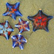 Starfishes  on a sand — Foto de Stock