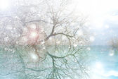 Abstract winter pound — Stock Photo