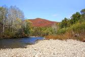 Autumn river scenery 5 — Stock Photo