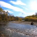 Beautiful autumn stream — Stock Photo