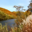Autumn on a river — Stockfoto