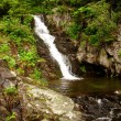 Beautiful mountain waterfall 1 — Stock Photo #8793453