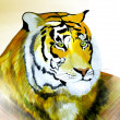 Beautiful painted tiger portrait — Stockfoto