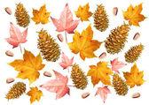 Autumn collage 1 — Stock Photo