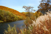Autumn on a river — Stock Photo