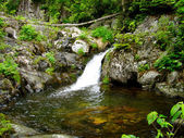 Beautiful mountain waterfall 3 — Stock Photo