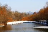 Beautiful spring river — Stock Photo
