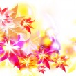 Abstract colorful flowers card — Stok fotoğraf