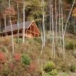 Stock Photo: Log Cabin
