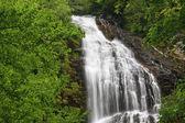 Summer Mingo Falls — Stock Photo