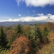 Herrin Gap View on Blue Ridge Parkway — Stock Photo #8062048