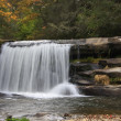 Waterfall Ledge — Stock Photo #8062249