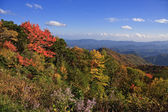 Blue ridge mountains — Stockfoto