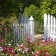 Garden Gate — Stock Photo #8073825