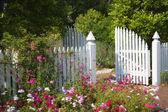 Trädgård gate — Stockfoto