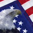 American Flag and Bald Eagle — Stock Photo