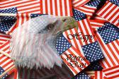 Happy Veterans Day — Stock Photo