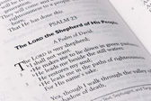 Salmo 23 — Foto Stock