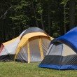 Camping Tents — Stock Photo #8218534