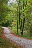 Estrada do país — Fotografia Stock