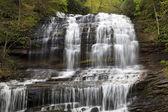 Pearson's Falls — Stock Photo