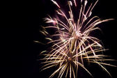 Fireworks Display — Foto de Stock