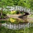 Bridge Reflections — Stockfoto