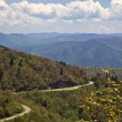 Blue Ridge Parkway — Stock Photo #8963702