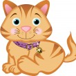 Cat Pet — Vector de stock #8028798