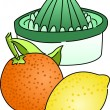 Citrus Juicer — Stock Vector