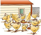 Chicken Coop — Vector de stock