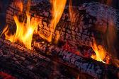 Wood Fire — Stock Photo