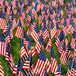 Royalty-Free Stock Photo: Field of Flags