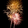 Bright Fireworks Explosions — Stock Photo #7980967