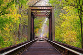 Railroad Trestle Countryside — Stock Photo