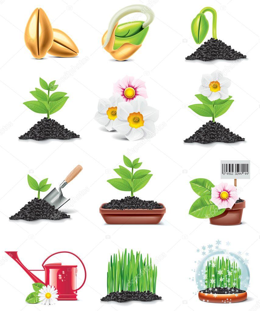 Цветов для детей обучение
