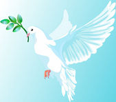 The white dove of peace — Vector de stock