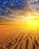 Dramatic sunset in a sand desert — Stock Photo