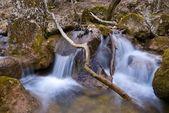 Małe kaskady na rzece górskiej — Zdjęcie stockowe
