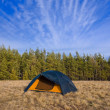 Touristic camp on forest glade — Stock Photo #10638838