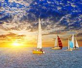 Sail yacht regatta — Stock Photo