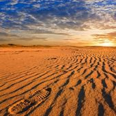 Red sand desert at the evening — Stock Photo