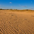 Sandy desert — Stock Photo