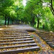 Stock Photo: Stairwayin park