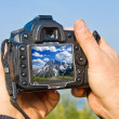 Digital photo camera in a hands — Stock Photo