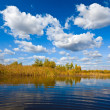 Blue autumn lake — Stock Photo #7984242