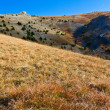 Grass slope — Stock Photo #7985594