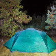 Touristic tent in night forest glade — Stock Photo #7985758