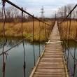 Suspended bridge over a river — Stock Photo