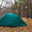 Stock Photo: Green touristic tent